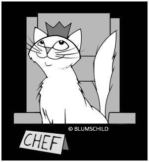 Chefkatze Charlie - To Kitty with Love - Blumschild